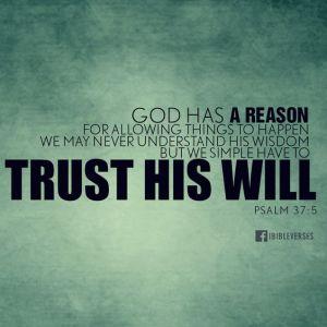 trust3
